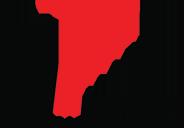 Marzilli International logo